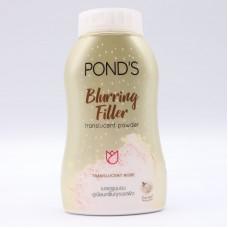 Powder Ponds Blurring Filler