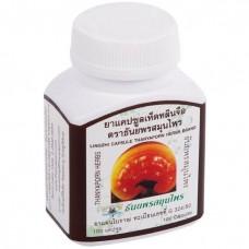 Linzhi Capsules Thanyaporn 100 capsules
